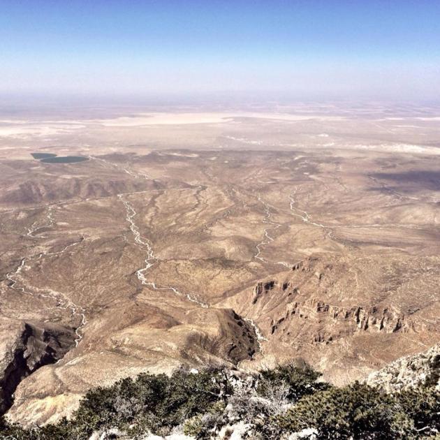 Chihuahua Desert