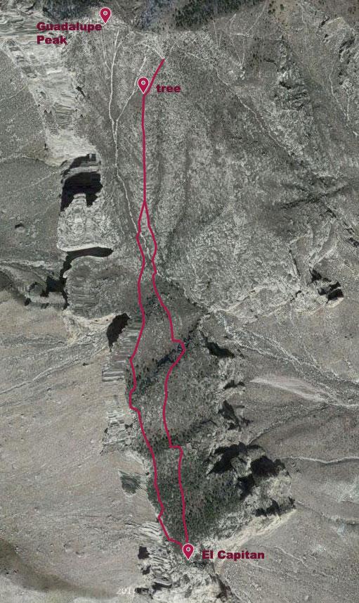 Map of Bushwhack