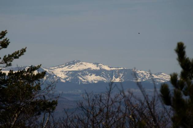 The snow is diminishing on the Presidentials