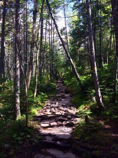 Hancock Loop Trail