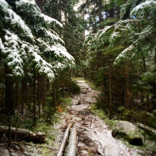 Snowy Carter-Moriah Ridge Trail