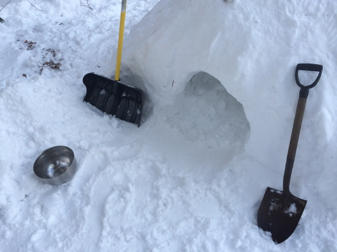 Tools used to dig Quinzee