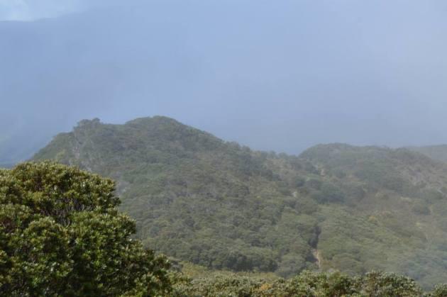 Cerro 1