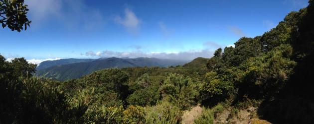 Cerro 3