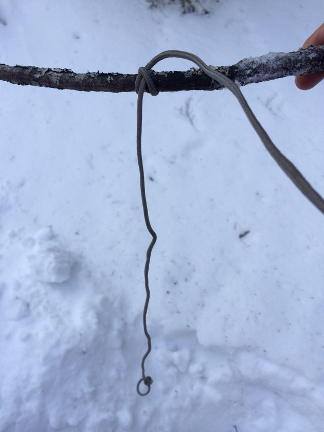 Clove hitch on stick at depth of hole