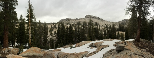 Snow, pine trees and granite mountains