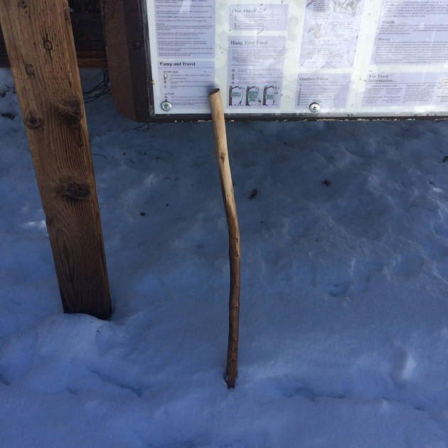 Walking stick leaning against sign