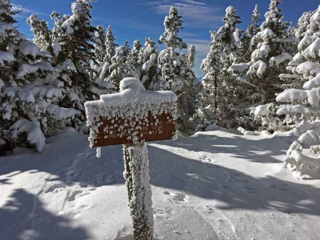 Trail sign covered in snow