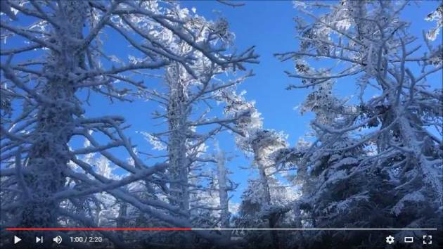 Video of North Crocker Mountain hike