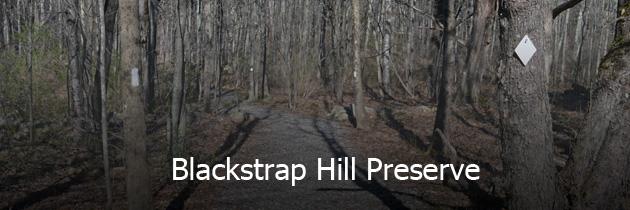 Blackstrap Hill Preserve