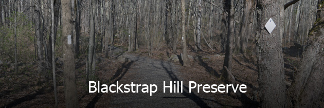 Blackstrap Hill Preserve
