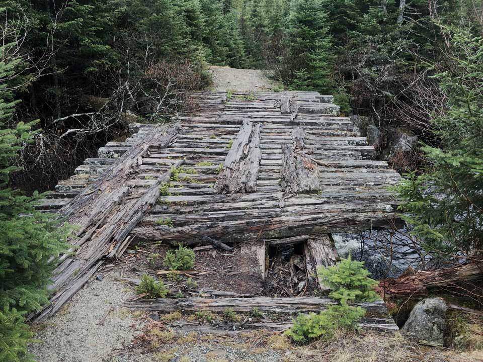 Old rotting bridge