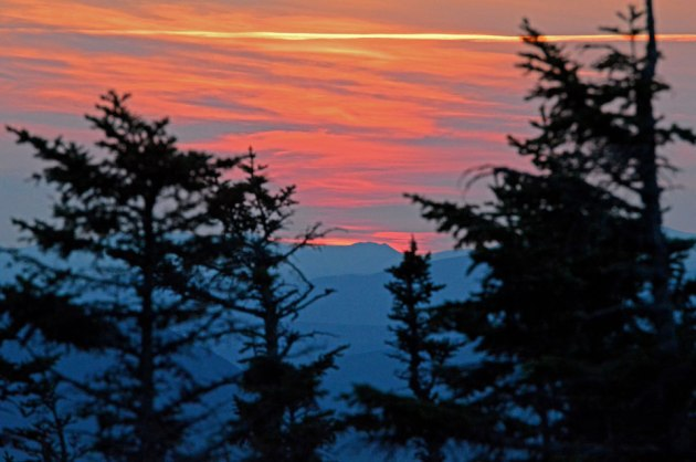 Sunrise and distant mountains through trees