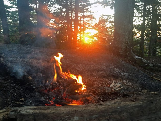 Campfire with sunrise through trees