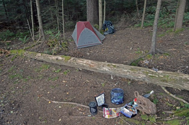 Tent, backpack and other gear in forest