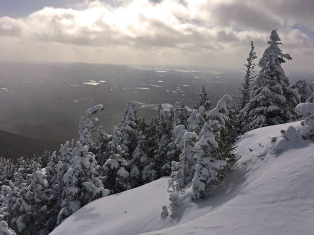 whiteface-south