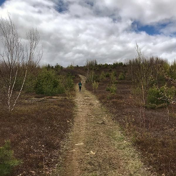 Cameron Mountain approach